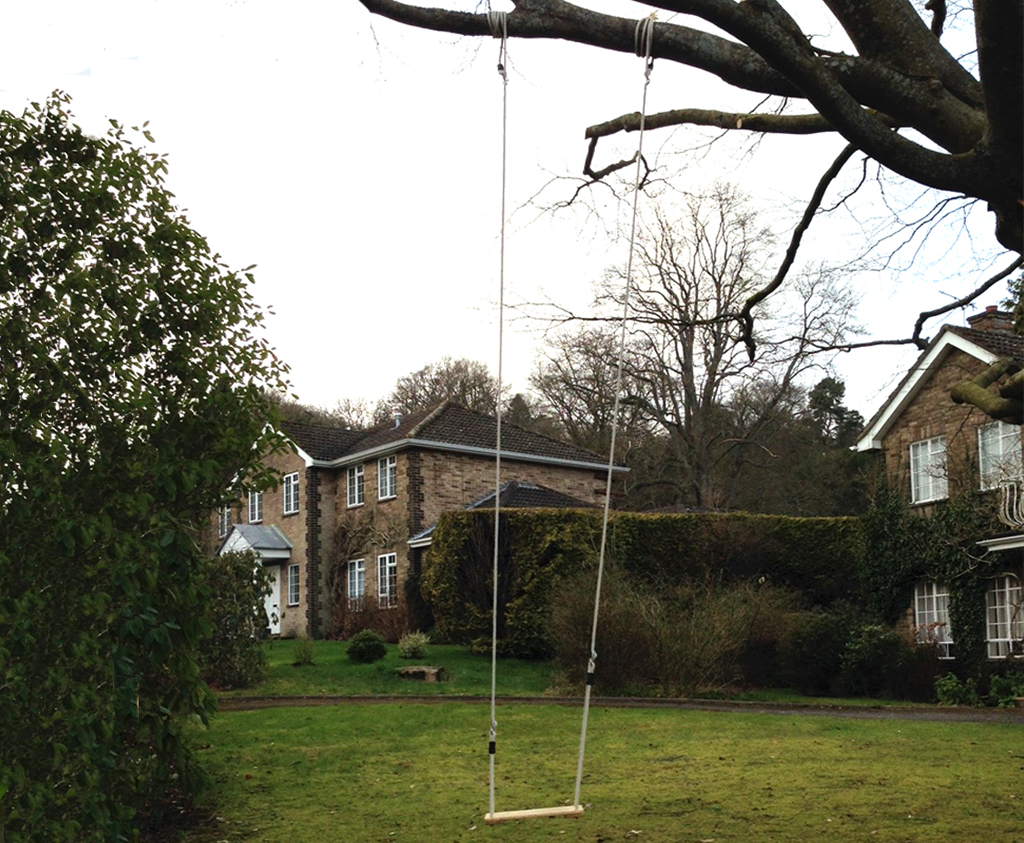 Attach A Swing From A Tall Tree