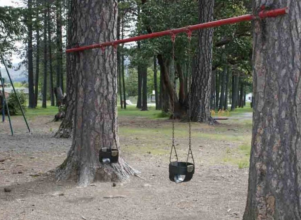 Swing From Tree To Tree