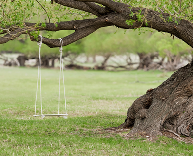 Hang A Baby Swing From A Tree