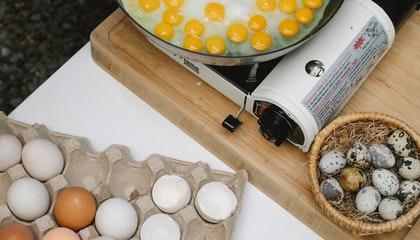 Crop unrecognizable chef frying eggs on pan
